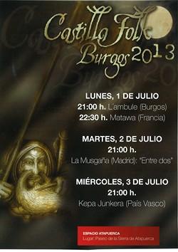 cartel castilla folk 2013