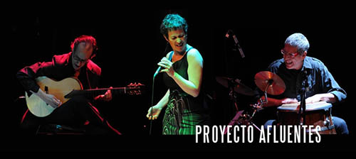 Proyecto Afluentes. Sandra Rehder. 500