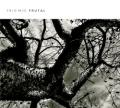 Trío MJC-Frutal-Portada